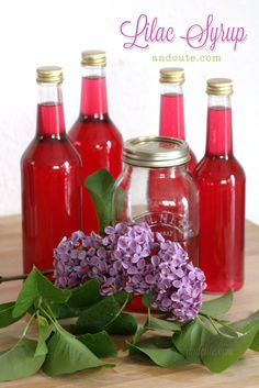 """Homemade Lilac Syrup"" Cool! I didn't even know you could eat lilacs! And it's so pretty!!"