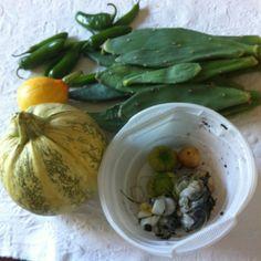 Cocecha de verano de amigos que me compartieron:nopales,chile serrano y gordo,flor de calabaza y cuitlacoche!!!!!! En Budapest.