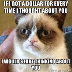 Bahahahaha ohhh Grumpy Cat..