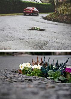 pothole gardens..interesting.