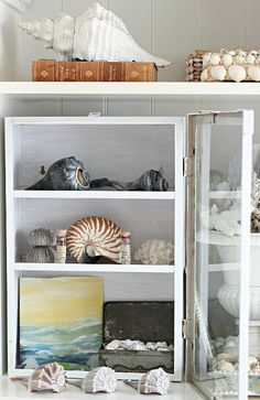 Shell Decor in a Glass Cabinet on a Shelf | BEACH BLISS LIVING