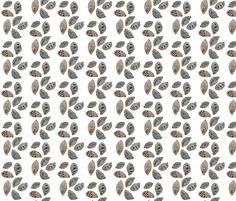 Seed Pods fabric