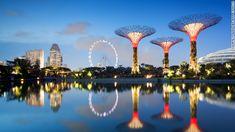 CNN.co.jp : 50メートルの人工の木がそびえる シンガポールの新名所を紹介! - (1/6)