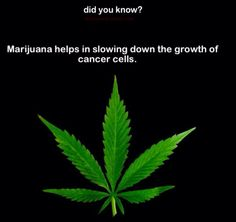 """Did you know? I hope you find a solution. For legal pain relief, naturally sounds good!! premium UK Cannabidiol """"CBD"""" Oils and CBD vape e-liquids. Share and like them at on.fb.me/1ivWE4K Try it ?"""