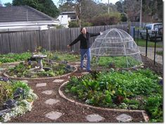 When designing edible gardens, a site-specific problem will often crop up. One of the most enjoyable aspects of permaculture design […] Potager Garden, Edible Garden, Vegetable Garden, Garden Landscaping, Permaculture Design, Chicken Garden, Hobby Farms, Urban Farming, Raised Garden Beds
