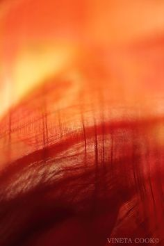 abstract orange & red photograph