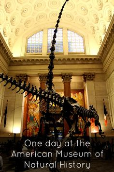 One day at the American Museum of Natural History in New York City with kids.