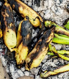 Ember-Roasted Corn and Leeks