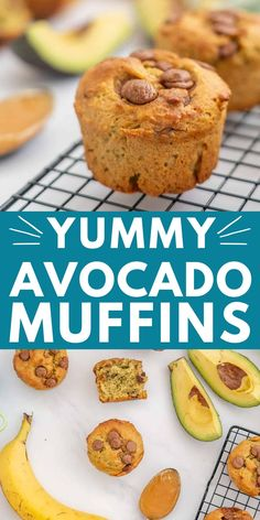 This avocado banana muffin recipe with chocolate chips, is healthy, dairy-free, low sugar, for kids, a healthy snack #muffins #muffinrecipes #dairyfree #healthyrecipe #avocado Chocolate Chip Recipes, Healthy Chocolate, Chocolate Chips, Chocolate Avocado Cake, Toddler Muffins, Baby Muffins, Muffin Recipes, Baby Food Recipes, Toddler Recipes