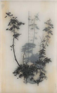 © Brooks Shane Salzwedellayered prints on tracing paper?