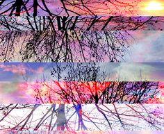 árvore listrada - pattern estampa