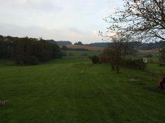 garten bio.gut südburgenland Golf Courses, Landscape, Nature, Lawn And Garden