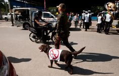 NO SMOKING, A K-9 team from Task Force Gensan joins the caravan during the launch of a new ordinance that put more teeth to the city-wide smoking ban. Photo by Edwin Espejo/Rappler