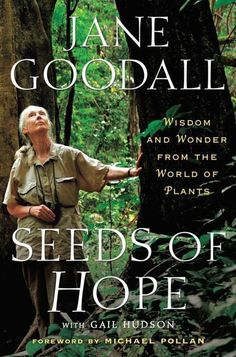 Seeds of Hope, new book by Jane Goodall. As a child, she read The Wind in the Willows perched in her favorite tree.