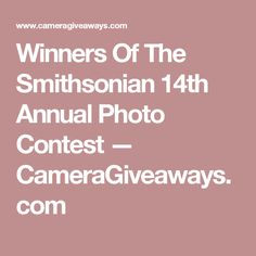 Winners Of The Smithsonian 14th Annual Photo Contest — CameraGiveaways.com