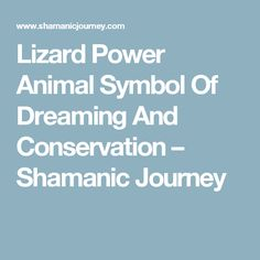 Lizard Power Animal Symbol Of Dreaming And Conservation – Shamanic Journey