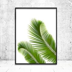 Palm Print, Palm Leaf Print, Palm Leaf Poster, Beach Wall Decor, Palm Leaves, Tropical Poster, Palm Leaf Prints, Botanical Beach Wall Art by PrintsHomeDecor on Etsy