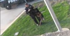 Petition | Fire Police Officer from Hammond, Indiana that mistreated his K-9 partner! | English