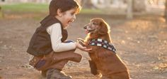 """How Freaking Cute Is This """"Star Wars"""" Shoot With a Doxie as Chewbacca? 