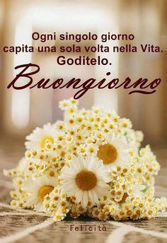 Buongiorno Italian Memes, Day For Night, Good Morning, Sweet, Ursula, Facebook, Gelato, Trust, Videos