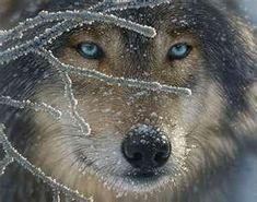 Wolf Cross Stitch Pattern PDF by lisalskinner on Etsy