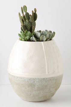 Great indoor planter to add some greenery via succulents I Anthropologie