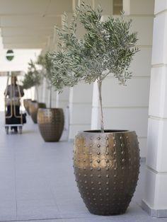 #rodospalladium Planter Pots, Candle Holders, Vase, Candles, Luxury, Home Decor, Decoration Home, Room Decor, Porta Velas