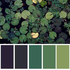 Colours 22.03.16