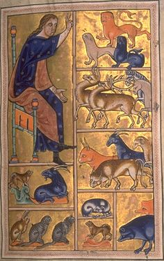 Adam Names the Animals, from the Aberdeen Bestiary
