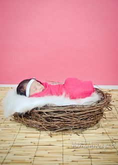 DIY Newborn Bird Nest Prop - Only $15---  must get this.... and use especially for Janae's baby with owl hat.... :)