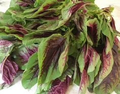 Amaranth Greens (βλήτα)  This is a summer dish with fried onions & tomatoes. Out of this world