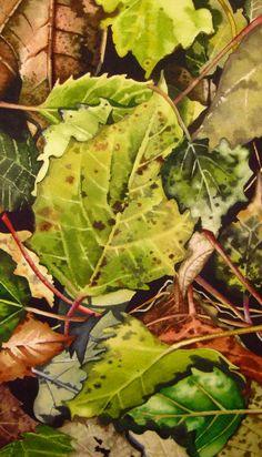 Fall Color series. www.sarastrozinskyart.com