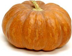 Fairytale pumpkins have deep ribs, a brownish-mahogany color, a smooth exterior and a sturdy stem. Slightly flattened these pumpkins average eight to twenty-five pounds and have thick, sweet, vibrant orange hued flesh. Their appearance is reminiscent of the pumpkin/carriage in the classic fairytale, Cinderella.
