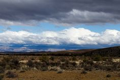 The beautiful is empty landscape of the karoo. Empty landscape of the karoo with clouds and some green
