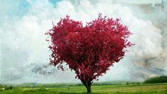 Sevdiklerinize Karşı Birazcık Sabır