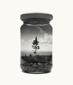 A world in a jar: potted landscape photography – in pictures | Art and design | The Guardian