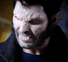 Dalu Werewolf