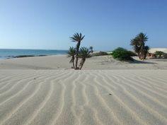 Beautiful beach in Boavista island #TeamCapeVerdean