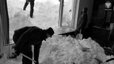 Soldiers Work To Clear Snow From Hotel Hit By Avalanche - Ananova Snow, In This Moment, Animals, Animaux, Animal, Animales, Eyes, Let It Snow, Animais