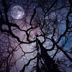I Create Surreal Southern Art In Mississippi With My Iphone Surreal Photos, Art Sculpture, Scenery Photography, Mobile Art, Beautiful Moon, Stars At Night, Moon Art, Moon Moon, Night Skies