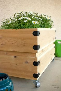 diy rolling planter cut sheet