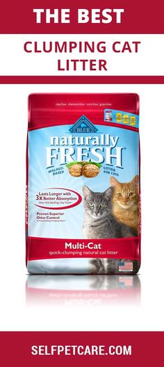 Ready to know about the best clumping cat litter of this world? This article is going to help you to select top rated clumping cat litter of this world Natural Cat Litter, Buffalo, Fresh, Things To Sell, Cats, Blue, Gatos, Cat