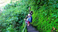 Quer durch den tropischen Wald