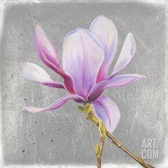 Magnolia on Silver Leaf II Art Print by Patricia Quintero-Pinto at Art.com