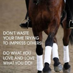 Do what you love, love what you do! www.eqwo.net #eqwonet #zitat #spruch #saying #pferdesport #equestrian #horse #horses #pferd #pferde #reiten #horseriding #riding #rider #riders #passion #motivation #dressur #dressage #springen #showjumping