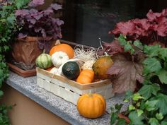 Home fall decorations