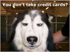 Seriously if you aren't taking credit card payments for your coaching products and services, you are leaving money on the table. You just don't know how much. I just got an email from a coaching business in Australia, I'm signed up to dozens of coaching email lists so I can