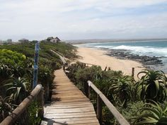 One of the most famous surfing beaches in the World. been there, love it, what a place! Jeffrey's bay or J Bay is just awesome, a dream place that you need to go to and enjoy! Amazing Pics, Awesome, Port Elizabeth, Beaches In The World, Ocean Beach, Wilderness, South Africa, Places To Go, Beautiful Places