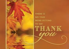 13 best thanksgiving cards images on pinterest thanksgiving thanksgiving appreciation with leaves by outfront holiday cards personalized cards with personalized envelopes high quality greeting cards for all m4hsunfo
