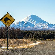 Skiwi crossing! Mount Ngauruhoe, Mount Tongariro National Park, N.I.